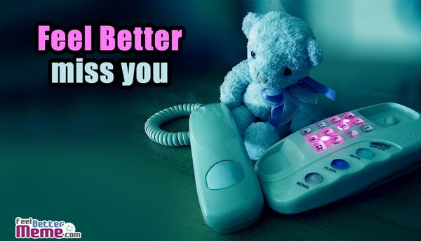 Funniest feel better miss you meme picture