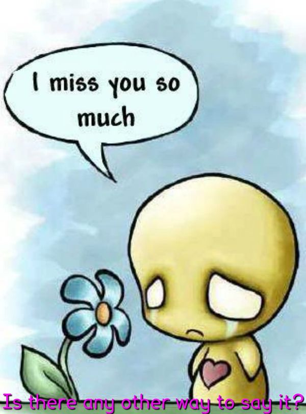 Funniest flower miss you meme joke