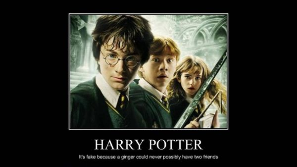 Funniest harry potter funny quotes image