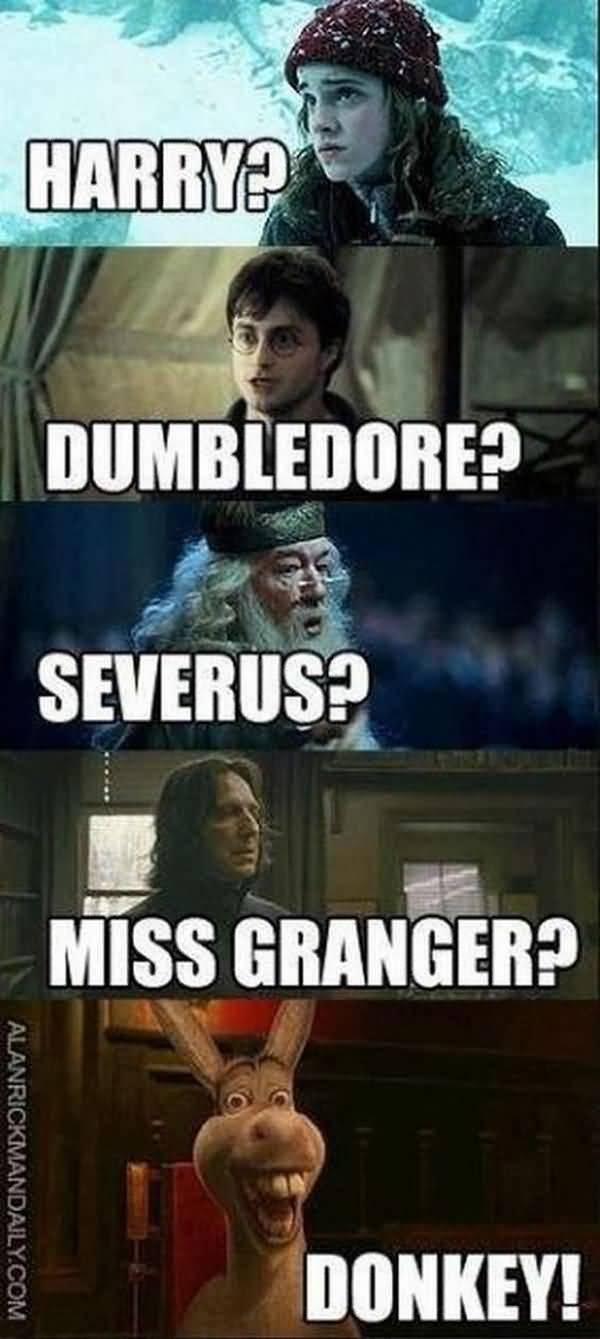Funniest harry potter humor image