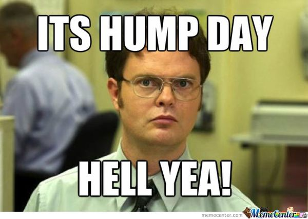 Funniest hump day memes pics jokes