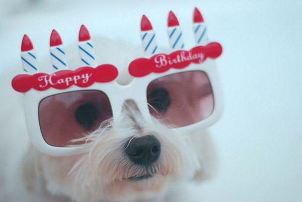 Funny Happy 21st Birthday Photos Meme