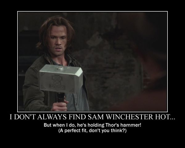Funny Sam Winchester Memes Photo