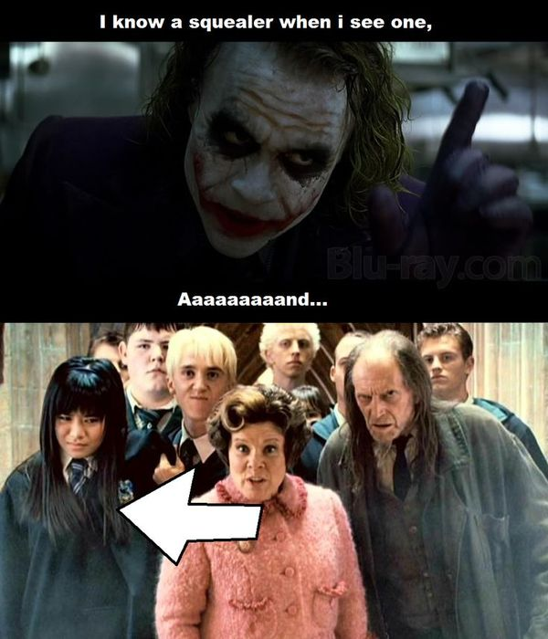 Funny awesome harry potter memes picture