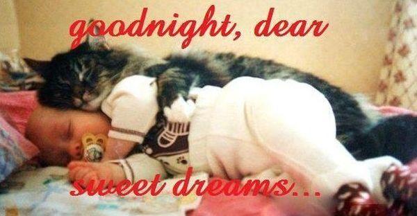 Funny best funny goodnight pics meme