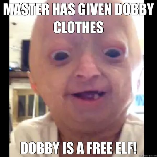 Funny dobby meme picture