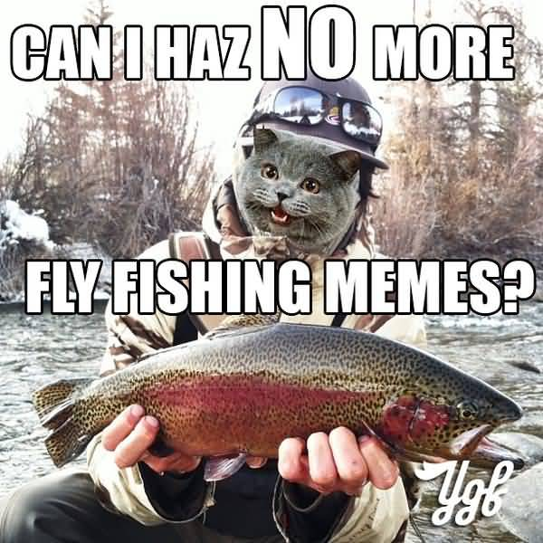 Funny fly fishing meme photo