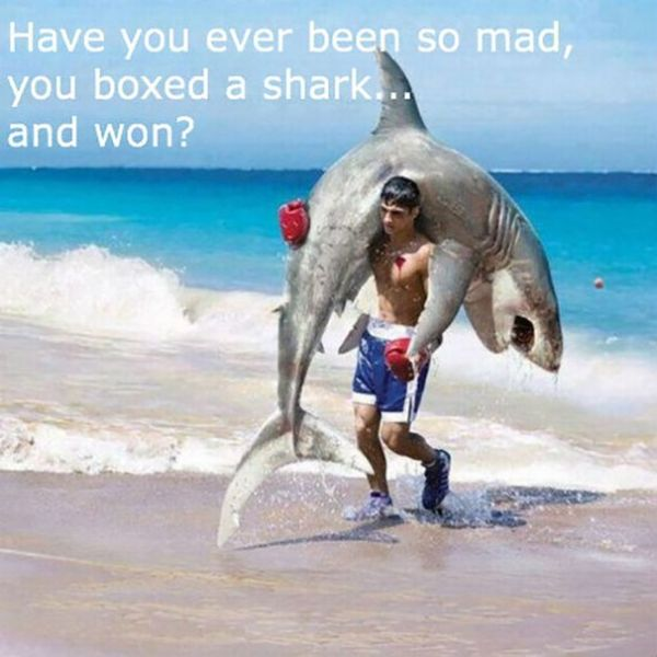 Funny hilarious fishing pictures jokes