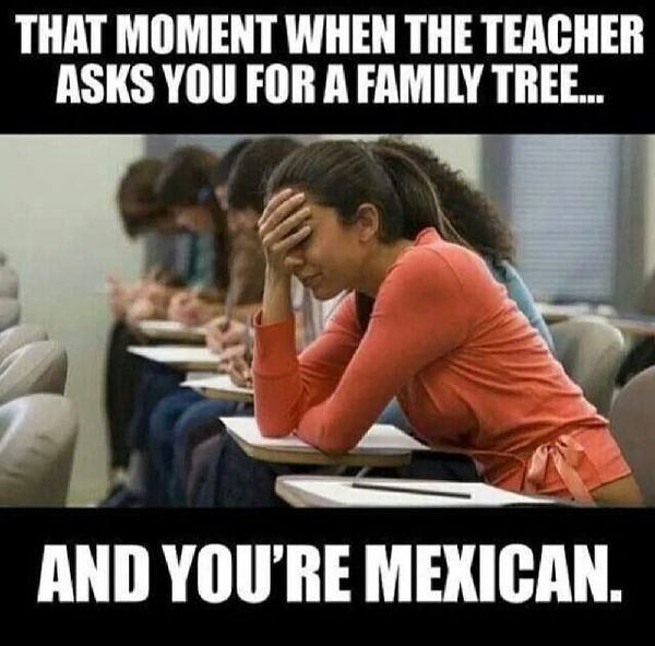 Funny mexican family memes photos