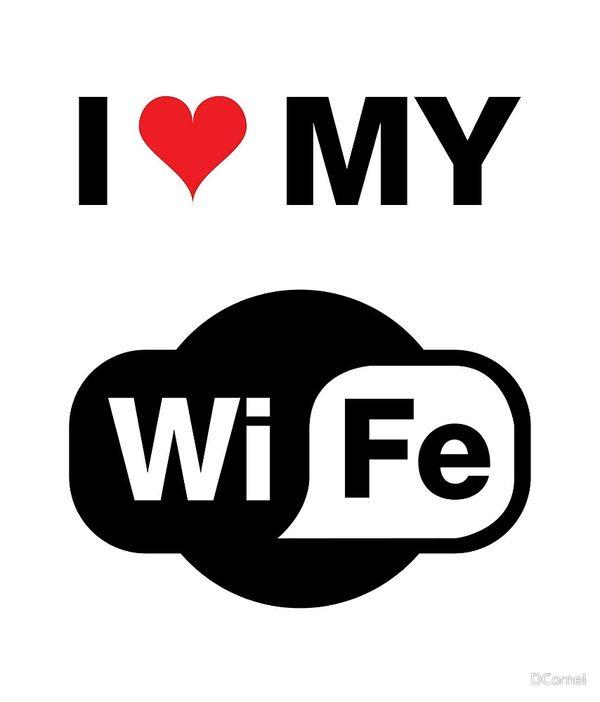 Hilarious I Love My Wife WiFI Meme