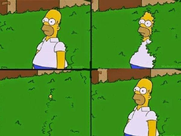 Hilarious homer simpson meme joke