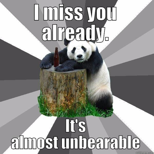 Hilarious panda miss you meme jokes