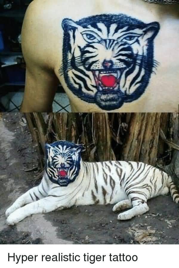 Hilarious tiger tattoo meme image
