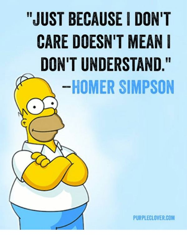 Hilarious usual homer simpson meme pictures