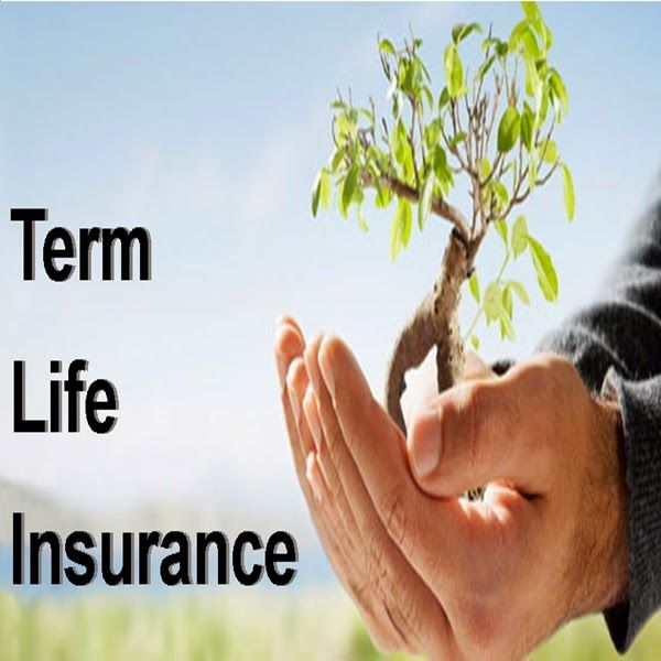 Instant Term Life Quote 13
