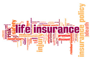 Instant Whole Life Insurance Quotes 06