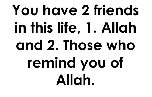 20 Islamic Quotes About Friendship Pictures & Photos