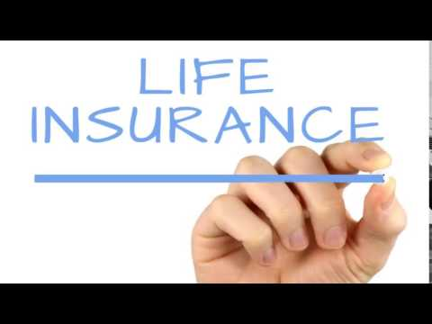 Joint Term Life Insurance Quotes 13