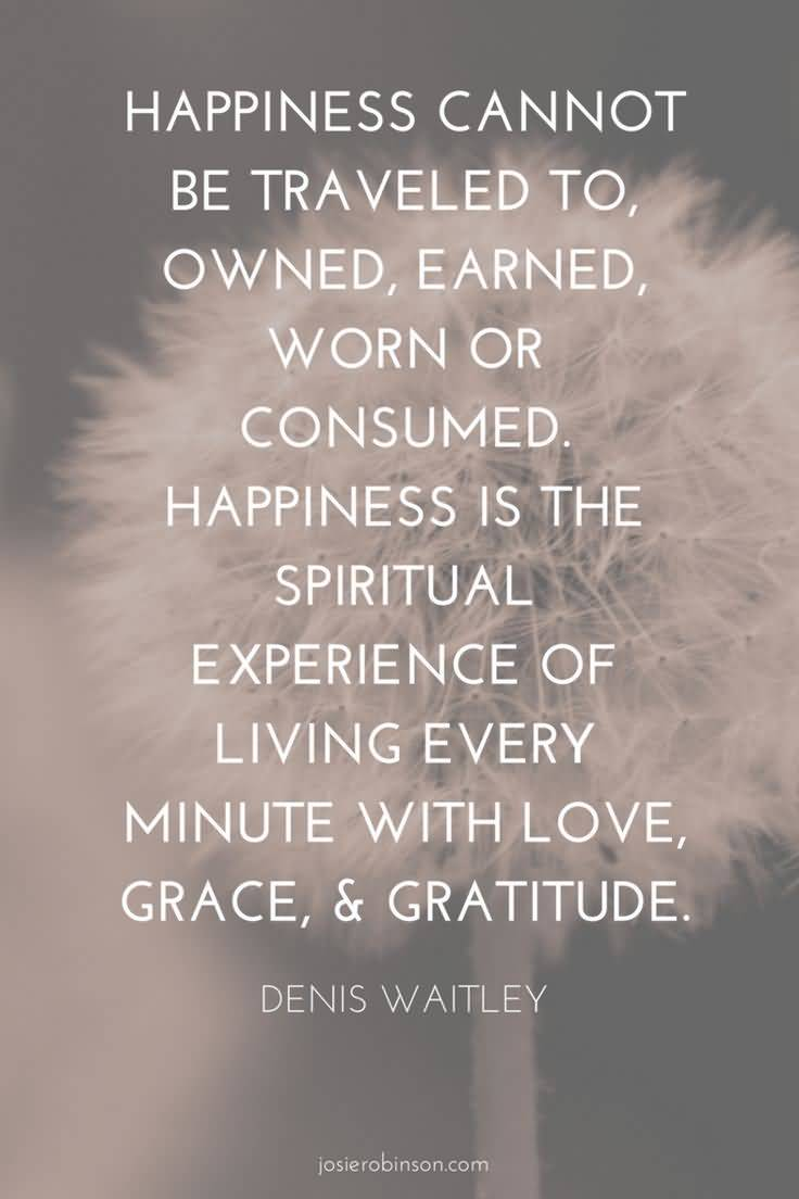 Life And Happiness Quotes 06