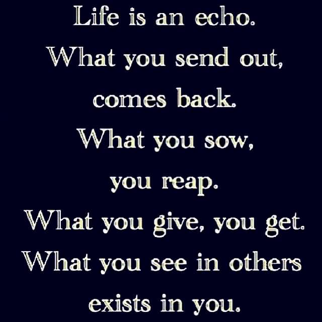 Life Is An Echo Quote 01