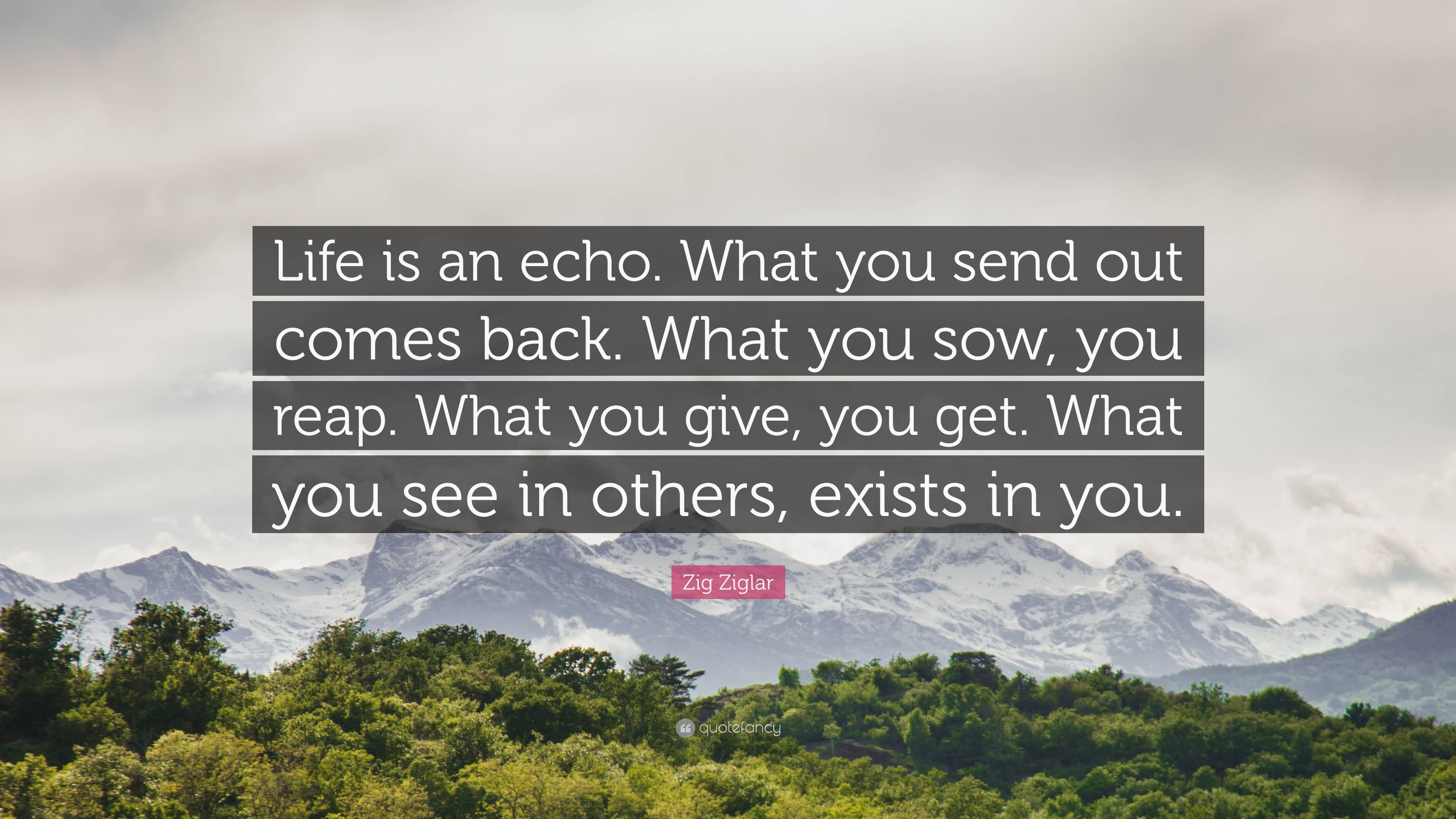 Life Is An Echo Quote 05