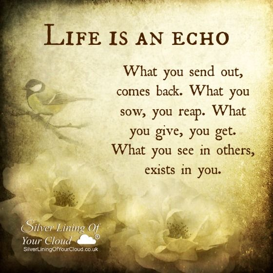 Life Is An Echo Quote 16
