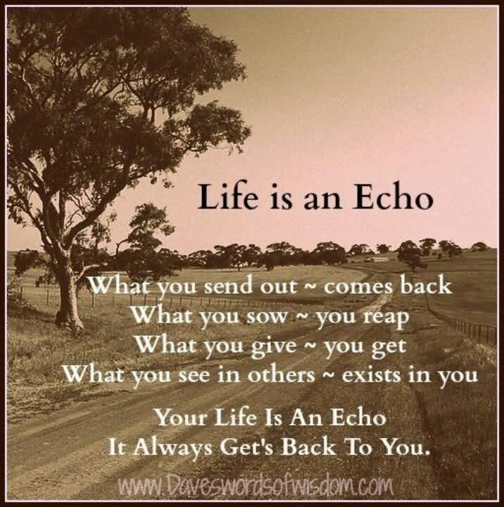 Life Is An Echo Quote 18