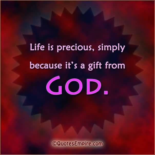 Life Is Precious Quotes 10