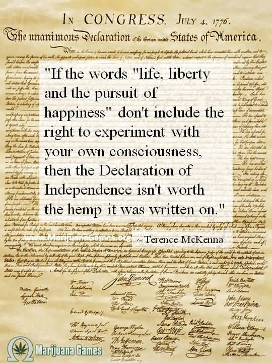 life liberty and the pursuit of happiness for the people in the declaration of independence The declaration of independence's justification for that among these are life, liberty, and the pursuit of happiness—that to our constitution preamble.