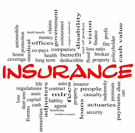 Long Term Life Insurance Quotes 12