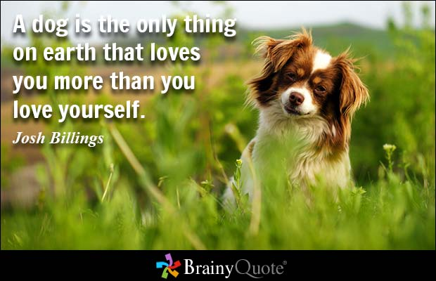 Loving Yourself Quotes 12