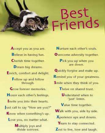 Maya Angelou Quotes About Friendship 19