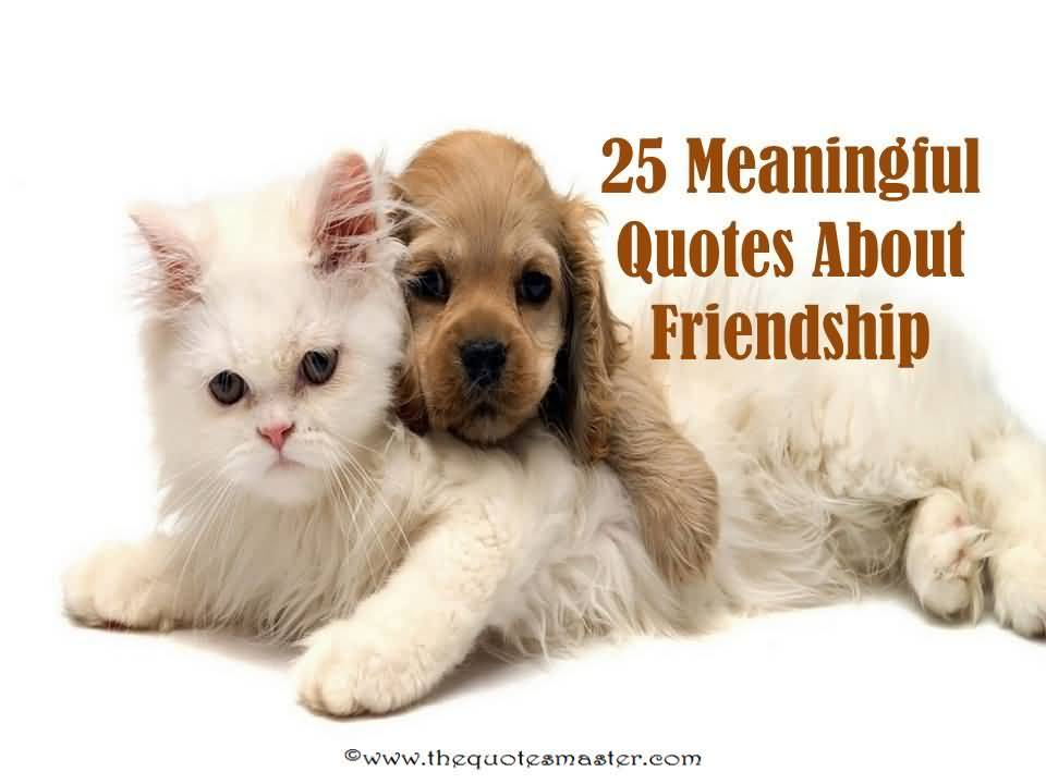 Meaningful Quotes About Friendship 20