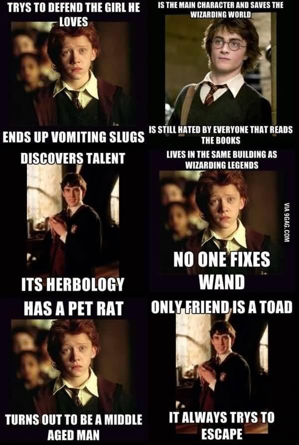 Most Funniest hogwarts meme image
