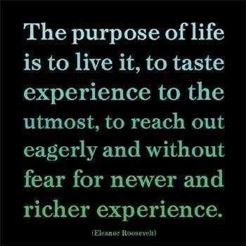 My Purpose In Life Quotes 06
