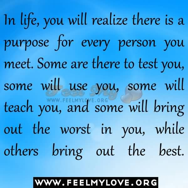 My Purpose In Life Quotes 08