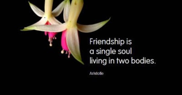 Popular Quotes About Friendship 02