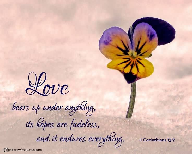 Psalm Quotes About Love 19