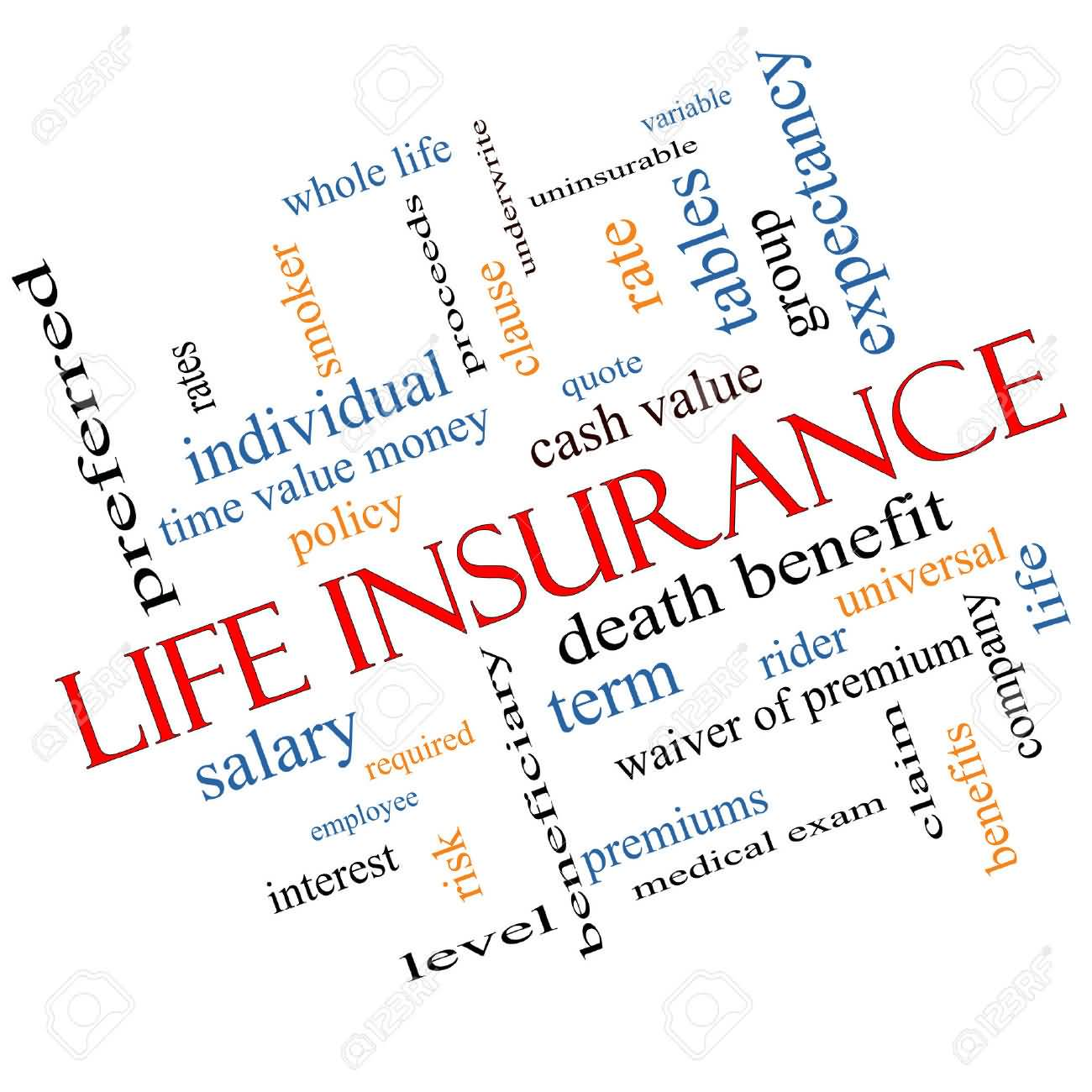 Quote Whole Life Insurance 13
