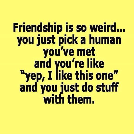 Quotes About Close Friendship Bonds 11