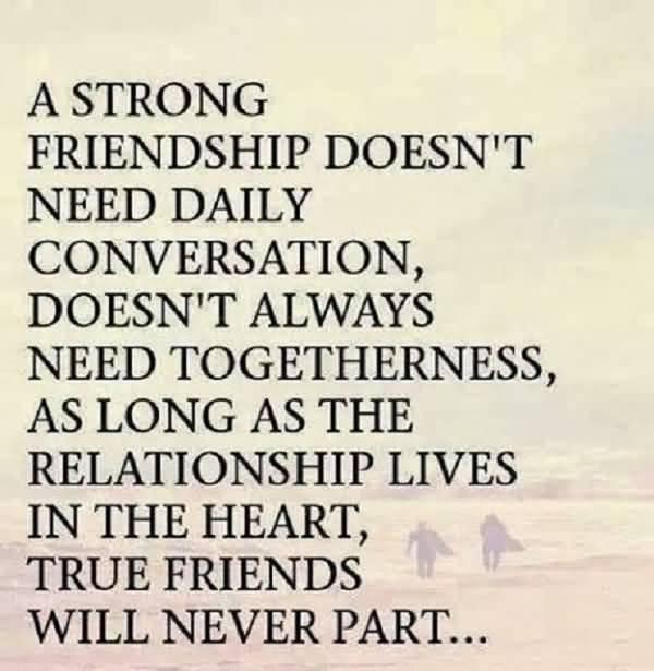 Quotes About Close Friendship Bonds 19