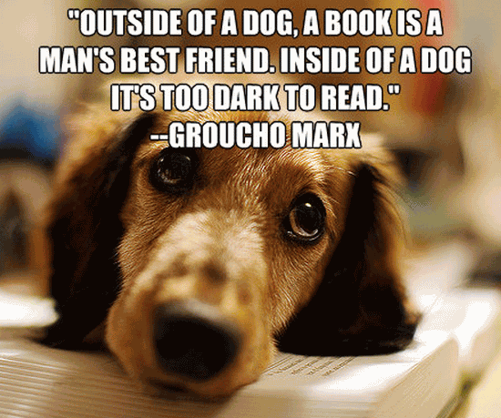 Quotes About Dog Friendship 19