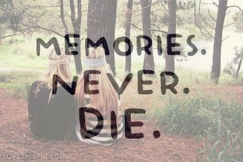 Quotes About Friendship And Memories 10
