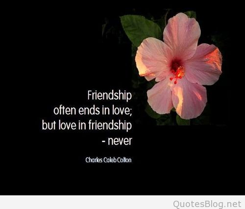 Quotes About Friendship By Famous Authors 60 QuotesBae Fascinating Quotes About Friendship By Famous Authors