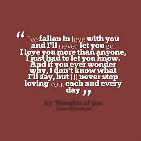 Quotes About How Much I Love You 04