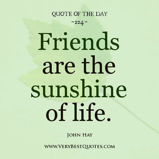 Quotes About Life And Friendship 10