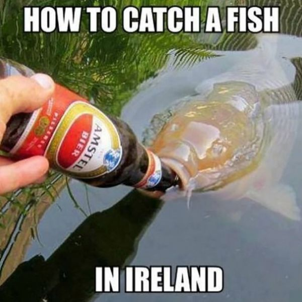 Very funny fish pictures with captions meme