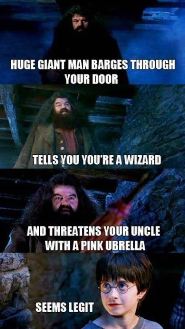 Very funny harry potter memes image