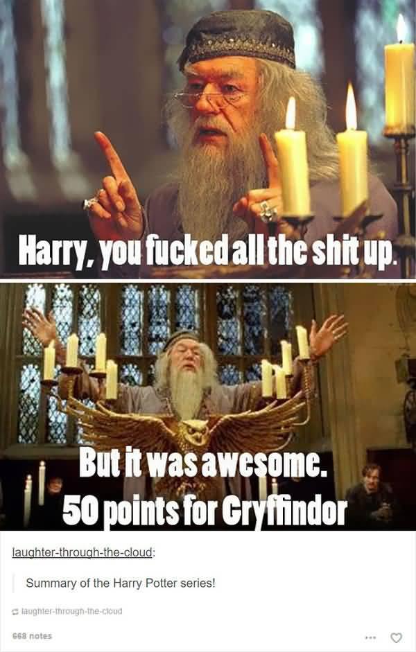Very funny harry potter pics meme