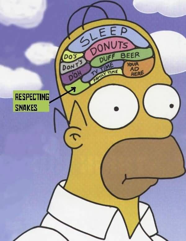 Very funny homer simpson drooling picture memes very funny homer simpson drooling picture memes quotesbae